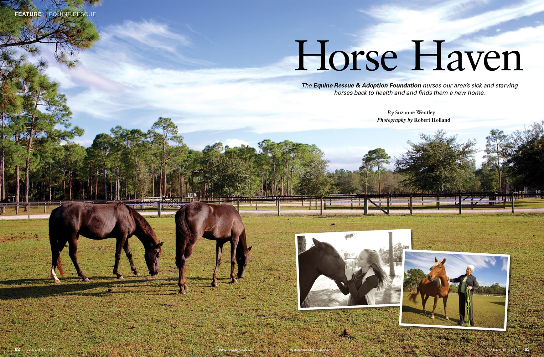 Horse Haven Equine Rescue_Robert Holland magazine photographer