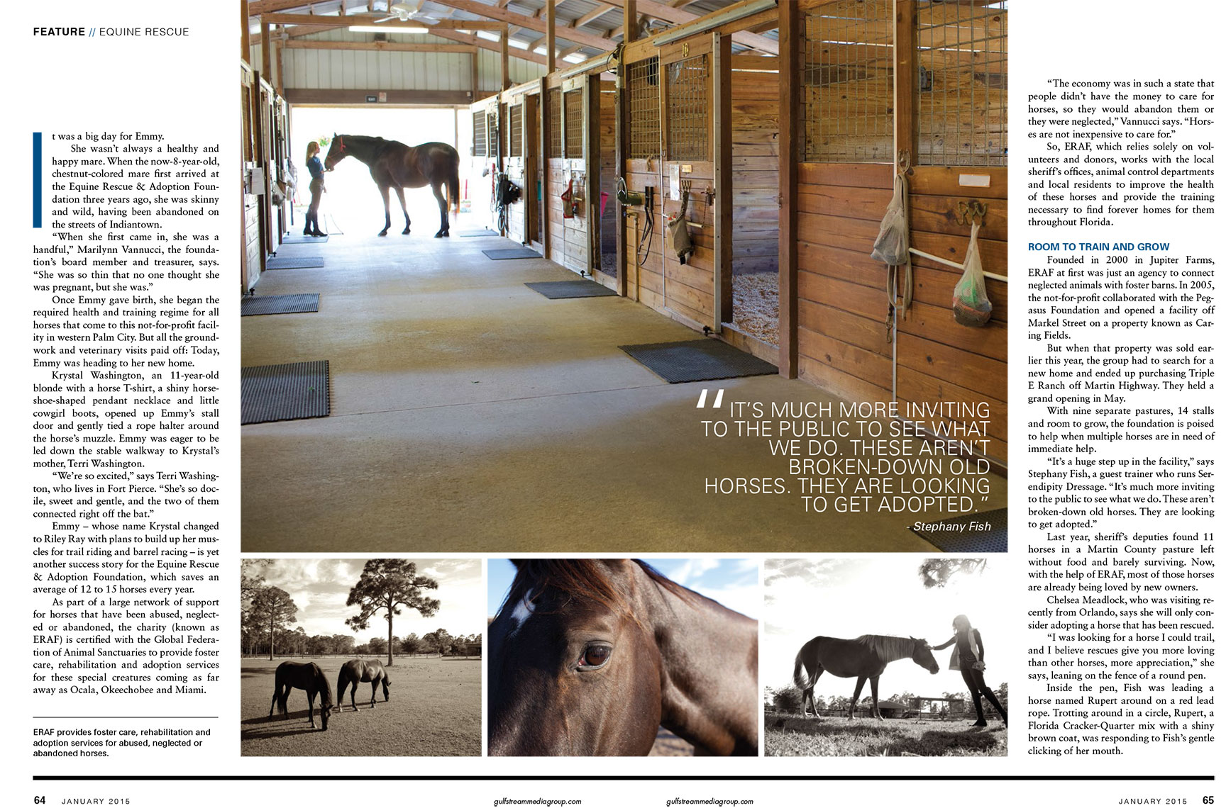 Horse Haven_Equine Rescue_Robert Holland magazine photographer